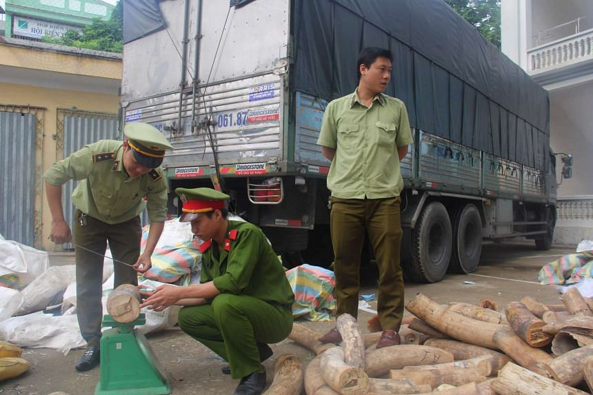 A Vietnamese police officer and two customs officials inspecting a haul of ivory that was found hidden in a truck in Thanh Hoa province, on July 8, 2017.