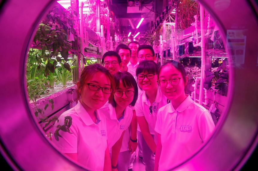 Volunteers posing for a picture from inside a simulated space cabin, as part of the Lunar Palace 365 Project, at Beihang University in Beijing on July 9, 2017.