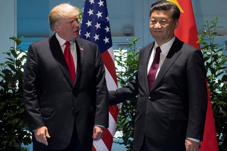 US President Donald Trump and Chinese President Xi Jinping meeting on the sidelines of the G-20 Summit in Hamburg on July 8, 2017.
