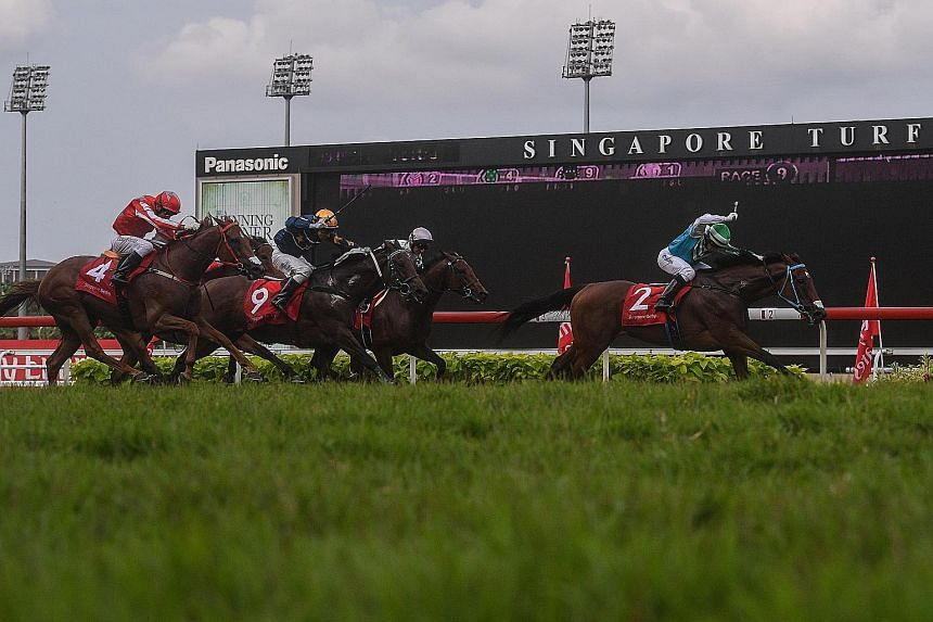 Infantry, with jockey Manoel Nunes aboard, leading (from left) Nova Strike, Lim's Samurai and Alibi en route to winning the Singapore Derby at Kranji. Alibi finished fourth in his bid for a Four-Year-Old Challenge sweep.