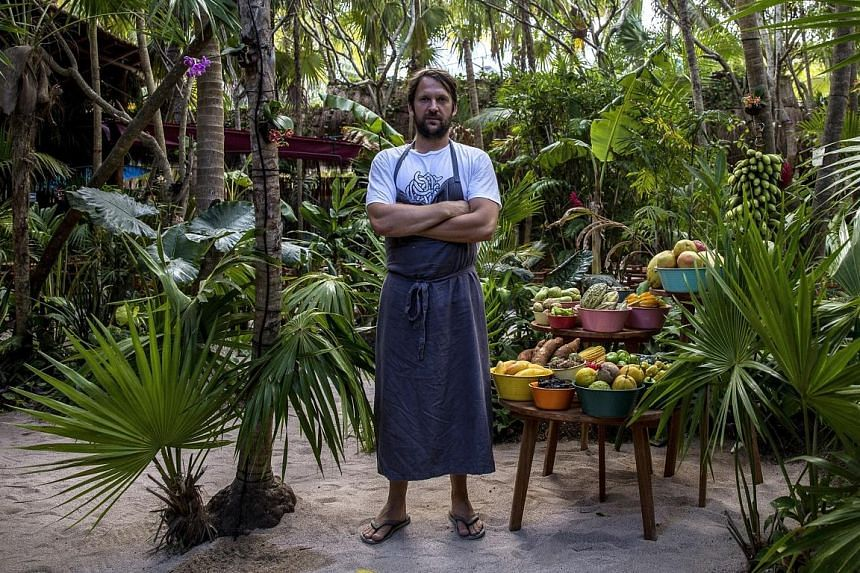 The app Vild Mad (Wild Food) by the founder of Noma restaurant, Rene Redzepi, includes tips on identifying, harvesting and cooking wild plants.