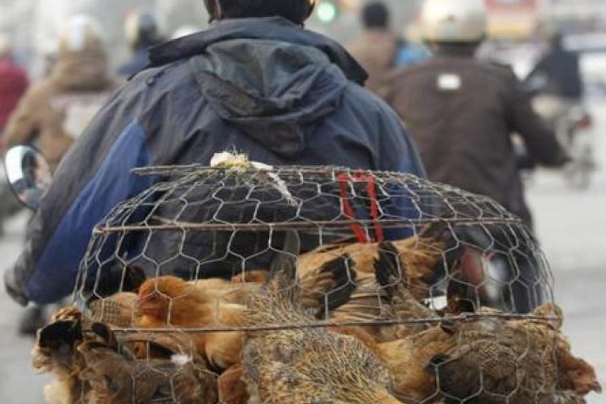 A man transports a cage containing live chickens on a street in Hanoi.