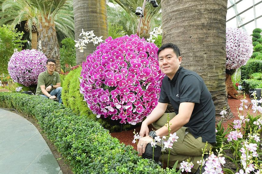 The orchid display (above) in the Flower Dome is by award-winning garden designer Peter Cheok (top right, with Gardens by the Bay assistant director Gary Chua, left).