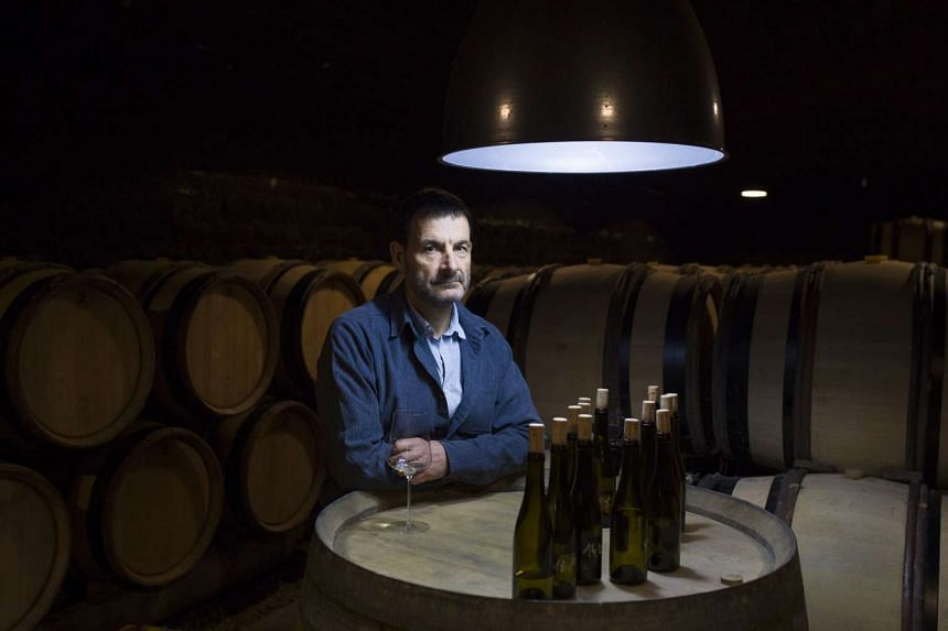 Jean-Marc Roulot knows he could make more money growing chardonnay, but cherishes the aligote his grandfather planted. PHOTO: NYTIMES