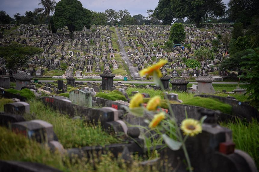 The view from block 7b at the Chinese Cemetery.