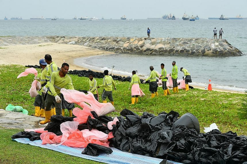 The affected section of the beach, which was temporarily closed to facilitate the clean-up process, has been reopened to the public.