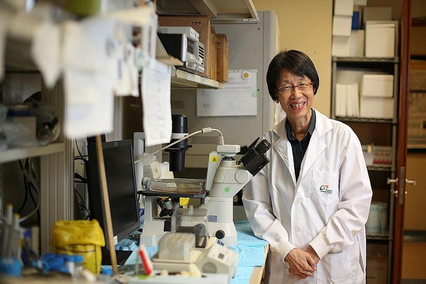 Professor Kon Oi Lian, who led the study at the National Cancer Centre Singapore, said the research may provide new insights for predicting survival and more effective treatment of gastric cancers.