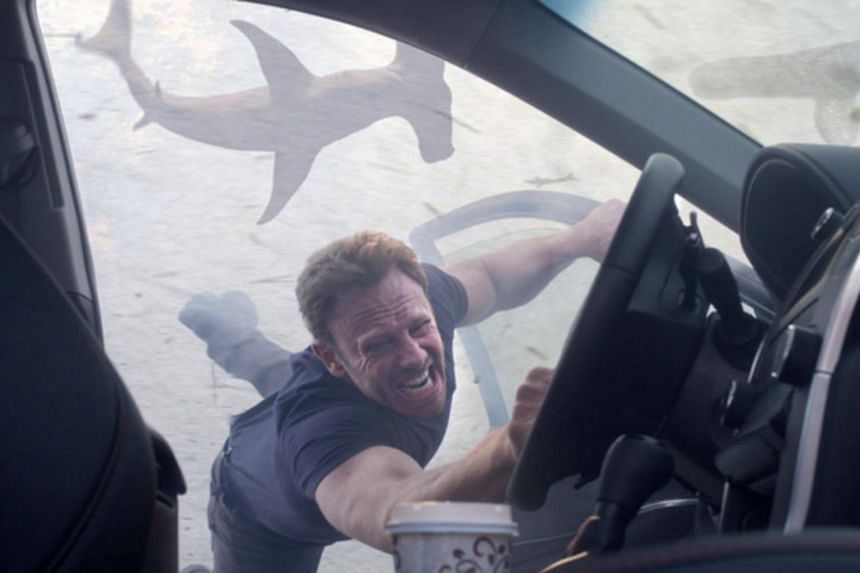 Sharknado 5: Global Swarming, is due for release on Aug 6.