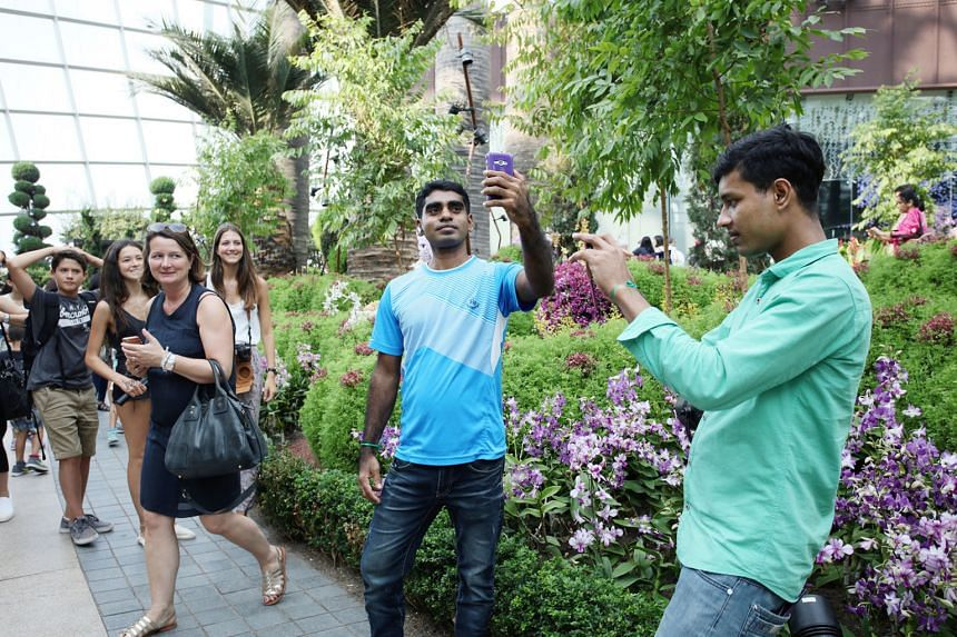 Some migrant workers from India and Bangladesh who had been injured in the course of their work got a respite from their problems yesterday. Some 40 of them went on a visit to Gardens by the Bay, taking in the sights of the Flower Dome and Cloud Fore