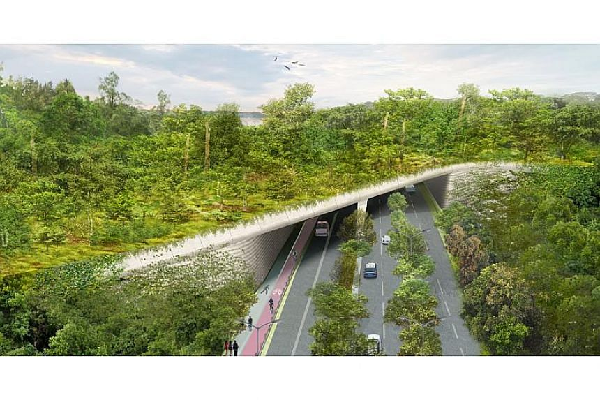 Artist's impression of the Eco-Link bridge.