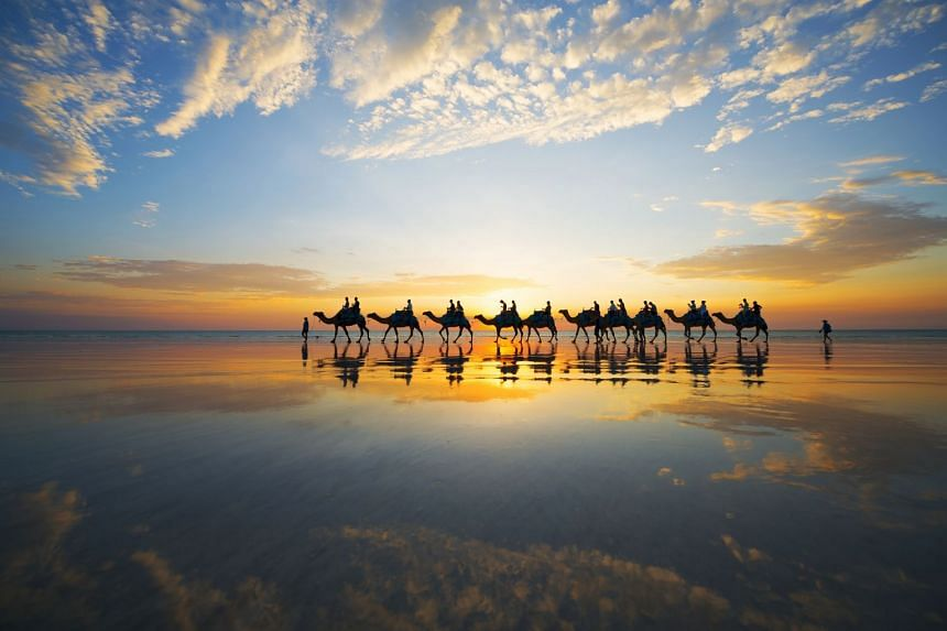 Experience riding a camel along the shore at Cable Beach