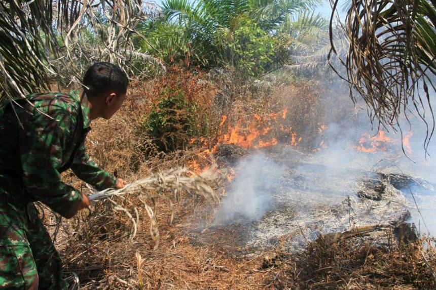 An Indonesian soldier fighting a fire in a peatland area in Suak Raya village, West Aceh province, on July 25, 2017.