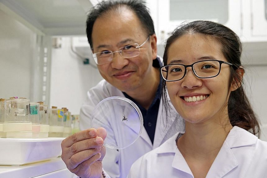 Associate Professor Li Daiqin and PhD student Chang Chia-chen are studying whether personality affects areas such as the ability of a species to survive, as management of animal personalities could help significantly in environmental initiatives.