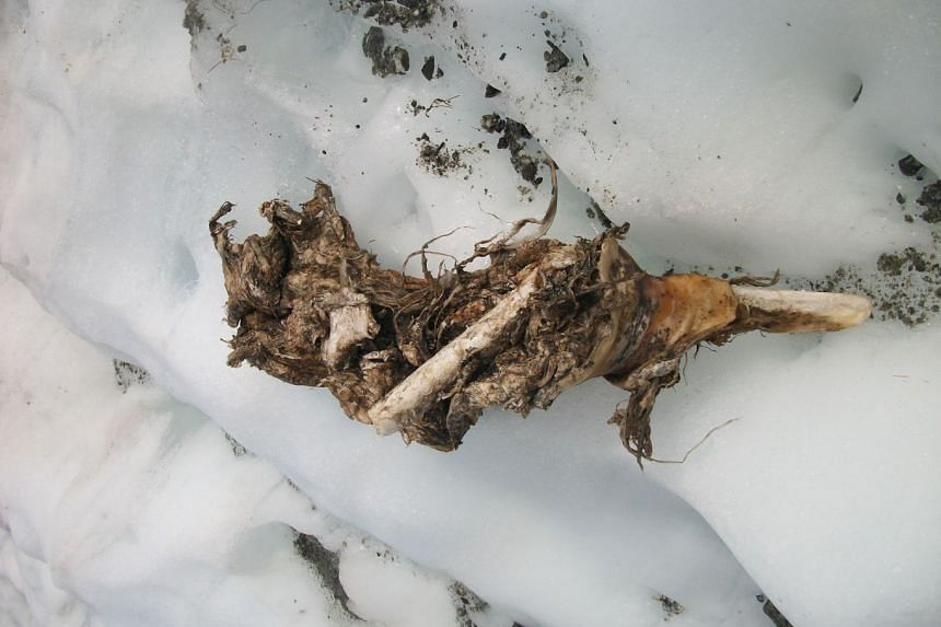 A handout picture released on July 28, 2017, by Daniel Roche, who discovered body remains on the Mont Blanc.