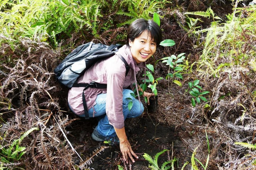 Ms Masami Sato, founder of non-profit organisation B1G1, planting a tree in Borneo. Her social enterprise connects SMEs with projects of their choice and has about 500 projects on its platform for them to choose from, including planting a tree for US