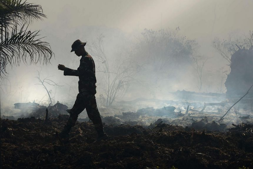An Indonesian ranger inspecting the peat forest fire at Meulaboh, Aceh province on July 26, 2017.