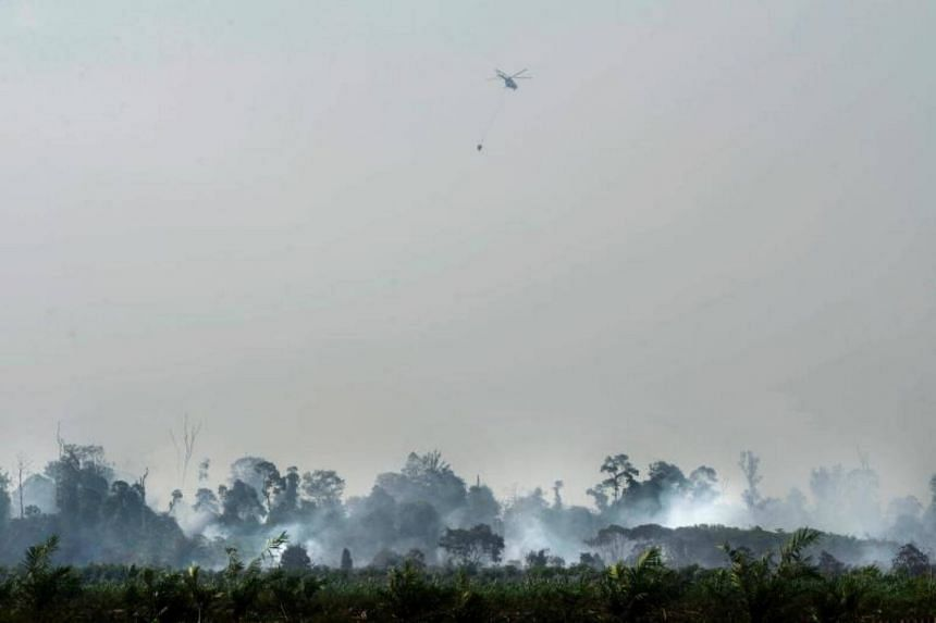 The forest fire rages on as a helicopter drops water over a peat fire in Meulaboh, Aceh province.
