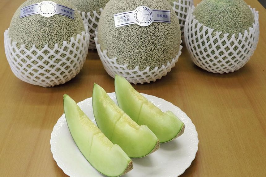 The new melon is named Bambina in honour of the deer associated with the Nara Prefecture. PHOTO: JAPAN NEWS - YOMIURI