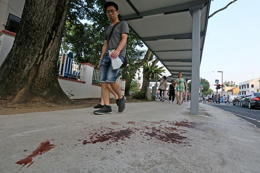The blood trail left by the victim stretched for 5m along a sheltered walkway.