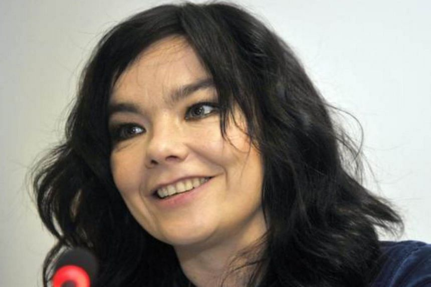 Icelandic singer Bjork holding a press conference in this Nov 6, 2008, file photo in Brussels.