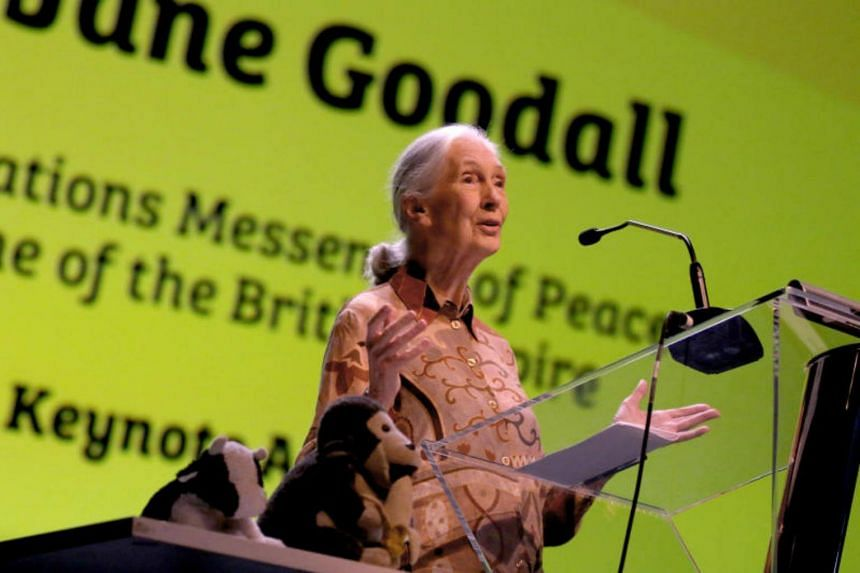 Dr Jane Goodall visits Singapore to celebrate the tenth anniversary of Jane Goodall Institute Singapore.