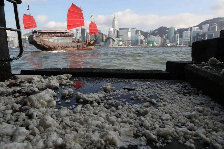 Congealed palm oil washing up on the shoreline at Victoria Harbour in Hong Kong, on Aug 6, 2017.
