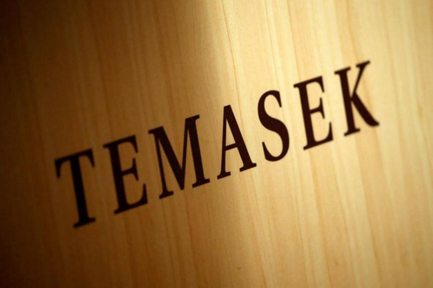Singapore state investor Temasek, one of the world's biggest investors, wants to make acquisitions in Germany, a top executive of the group told a German weekly newspaper.