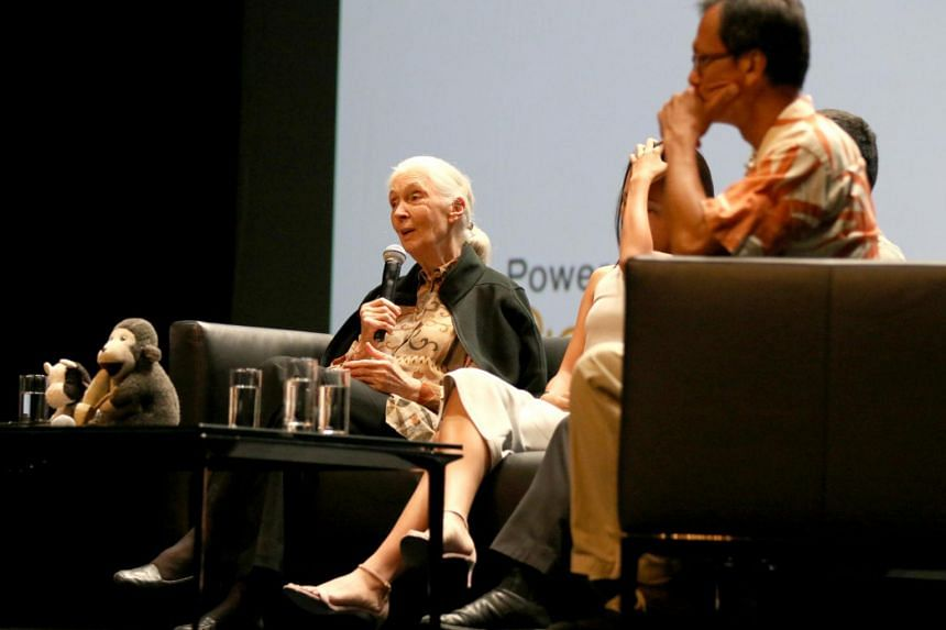 Dr Jane Goodall is in Singapore for a three-day visit to celebrate the tenth anniversary of the Jane Goodall Institute Singapore.
