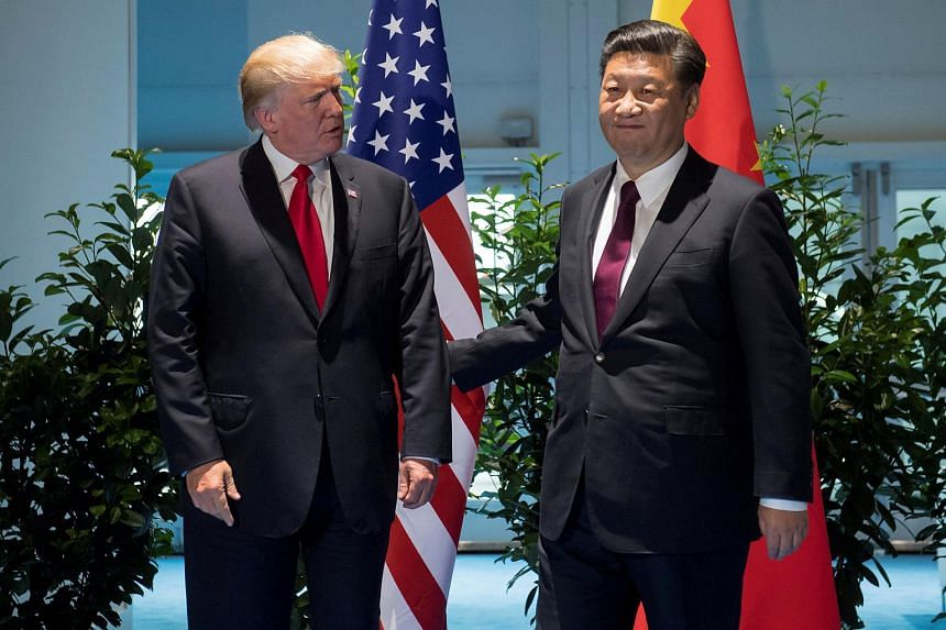 US President Donald Trump and Chinese President Xi Jinping (right) meet on the sidelines of the G20 Summit in Hamburg, Germany, on July 8, 2017.
