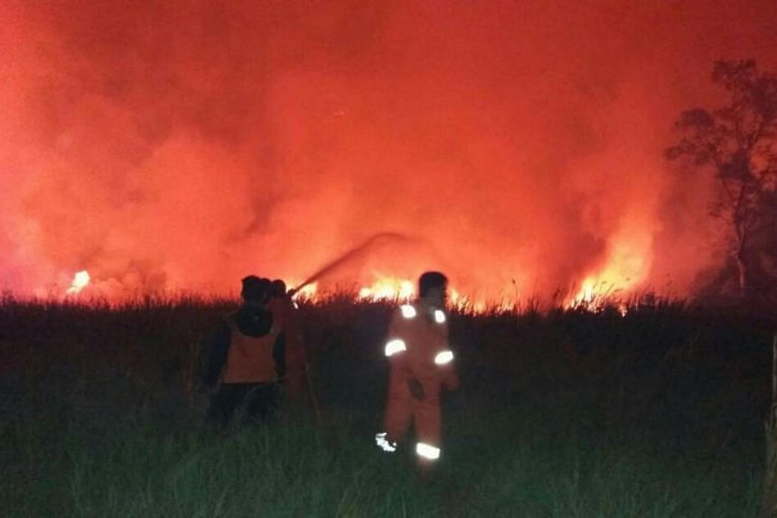 The most affected areas are Papua, with 93 hotspots, East Java with 17 and West Nusa Tenggara 11 hotspots. Most of the fires in Papua were in the Merauke regency.