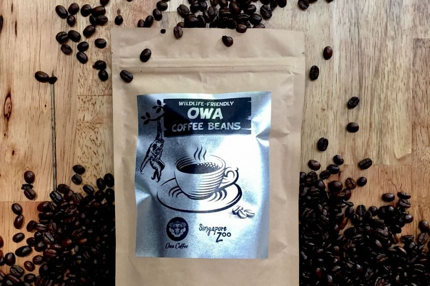 Get your cup of Owa Coffee at The Wild Deli café at the Singapore Zoo.