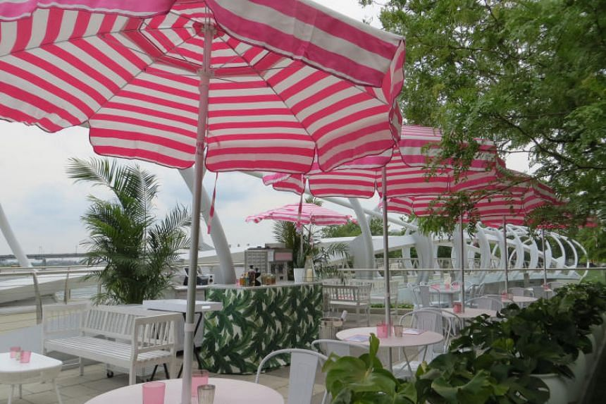 Rose Garden at Whaley's in Washington, DC. The setting combines water views with pink wines, frozen cocktails and Mediterranean-inspired food.