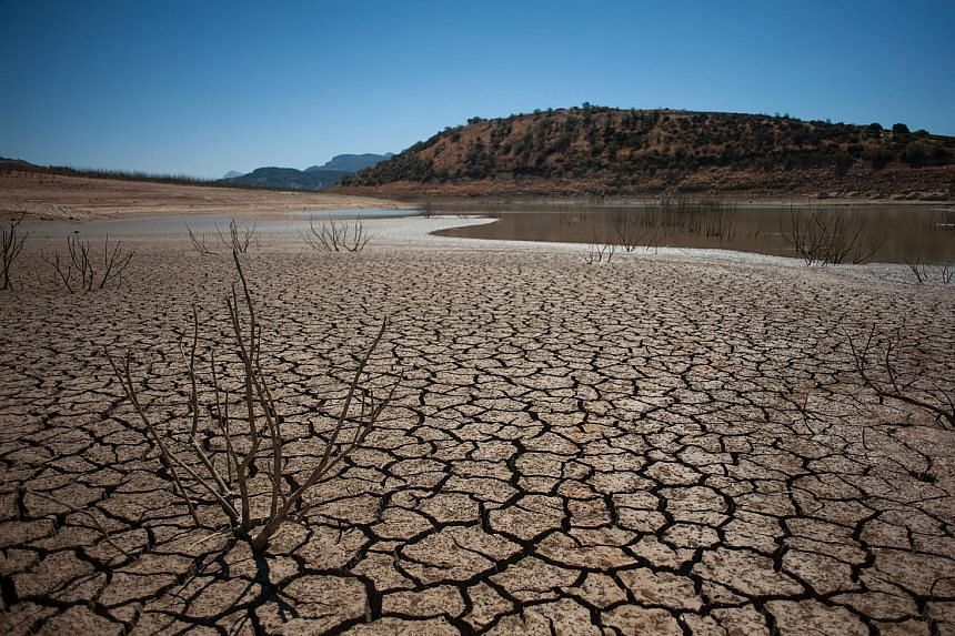 An ongoing drought in the Guadalteba reservoir in southern Spain has left the riverbed dry. At least 12 per cent of land surfaces experienced severe drought conditions or worse each month of last year, said the State of the Climate Report.
