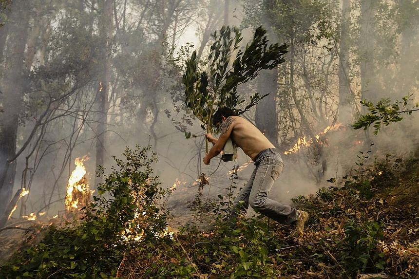 A man fights the flames of a forest fire near the village of Cioga do Campo in Portugal's Coimbra district on Saturday. Emergency services said 268 fires broke out on Saturday, the highest number for any single day this year, with 6,500 firemen fight