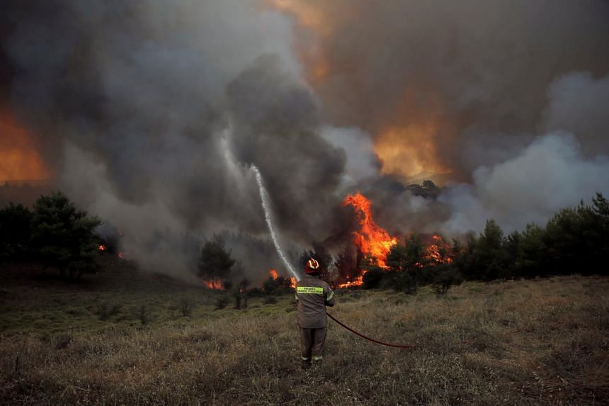 A firefighter tries to extinguish a fire during a wildfire near the village of Metochi, north of Athens, Greece, on Aug 14, 2017.