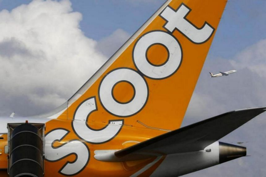 Scoot is investigating an alleged case of bed bugs on board one of their flights, after a passenger complained on Facebook.