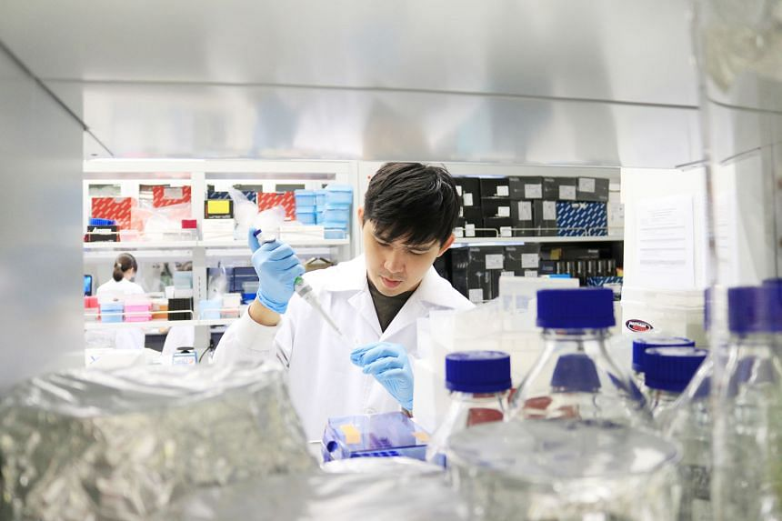 A medical technologist at Singapore General Hospital preparing tissue samples for genetic testing. Personalised medicine primarily uses genetic testing to customise medical treatment for patients by flagging the potential toxicity and side effects of