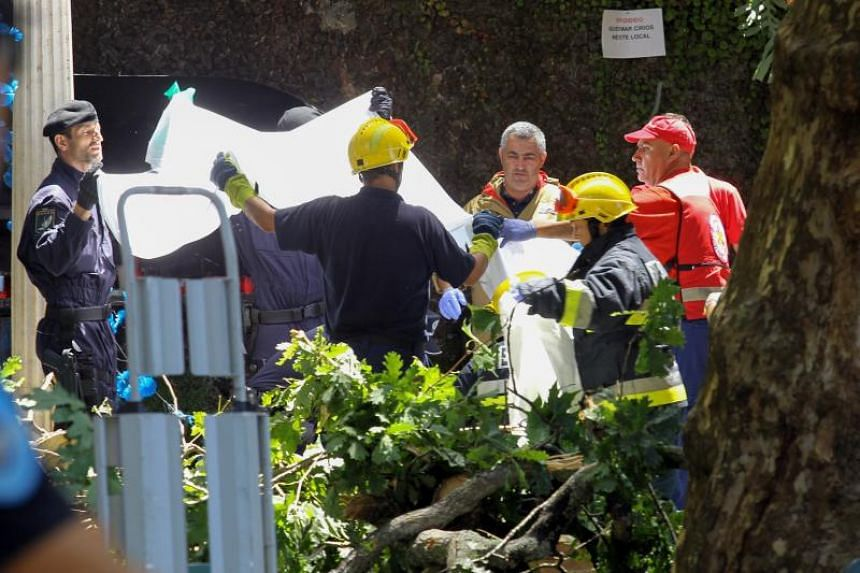 Firemen and emergency workers secure the site where a large tree fell and injured several people in Largo da Fonte, in the parish of Monte, on the Madeira island, Spain, on Aug 15, 2017.