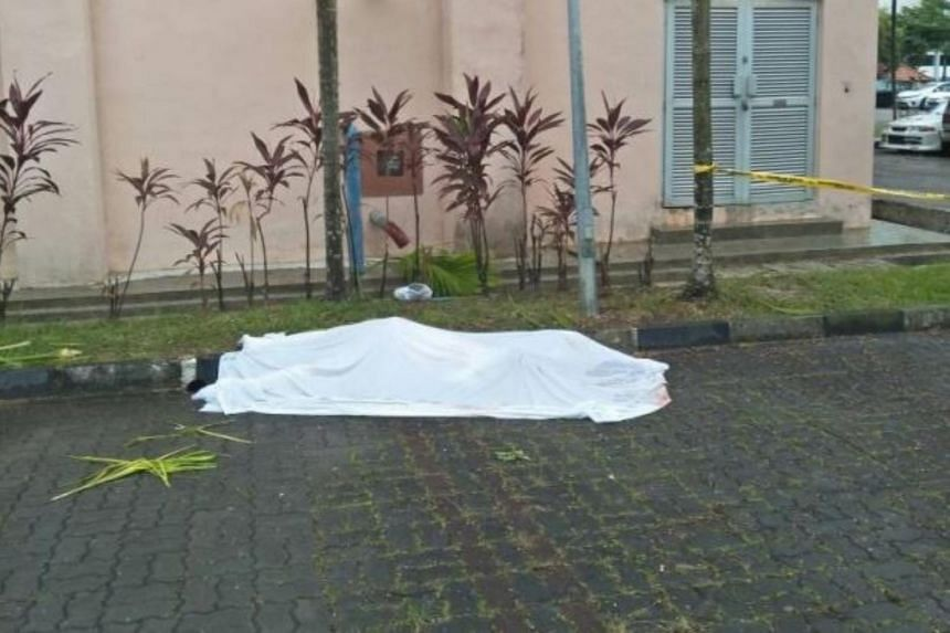 The Singaporean youth fell to his death from the ninth floor at an apartment building in Larkin.