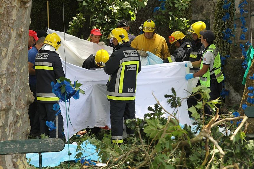 Firemen and emergency workers secure the site where a large tree fell and injured several people in Largo da Fonte, on Aug 15, 2017.