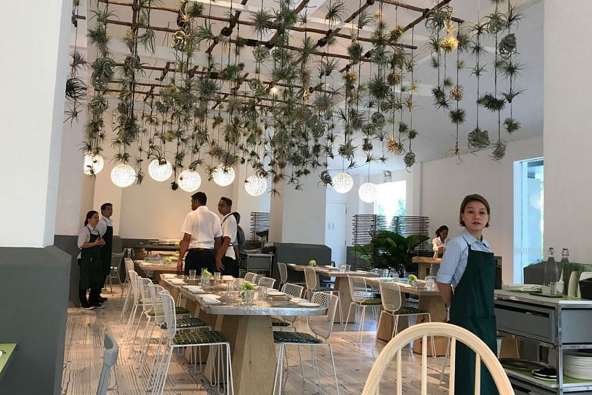 Como Cuisine comes with pure, almost sterile white walls and accents of greenery.