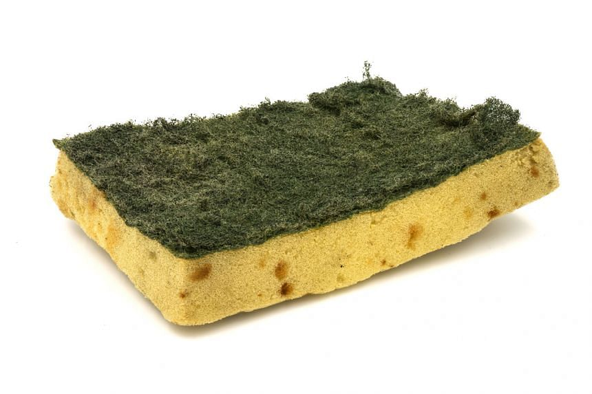 Researchers found that sponges cleaned regularly in soapy water or the microwave harboured more of a usually harmless bacterium.