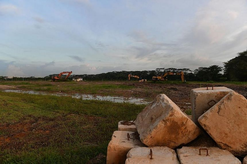 The new land parcels will be located in Lim Chu Kang and Sungei Tengah, and will come with basic infrastructure in place so that nurseries can move in quickly.