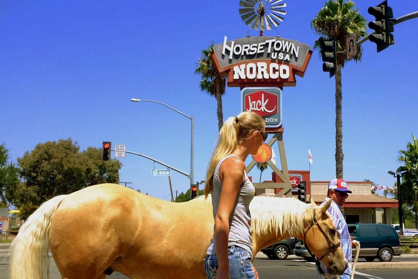Buzz Riebschlager (righrt) who is a supporter of President Trump with his horse in the town of Norco, California on Aug 17 , 2017.