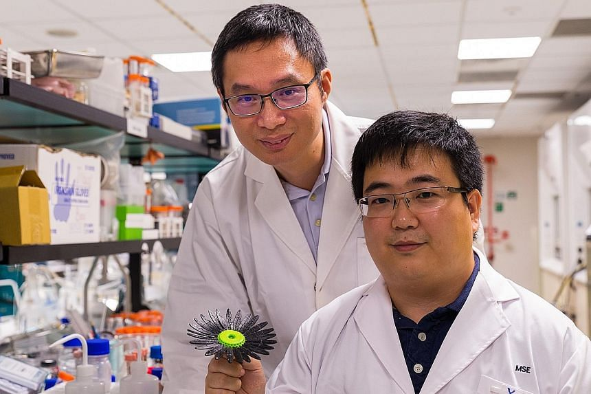 Professor Chen Xiaodong (left) and research fellow Yang Hui with the 3D-printed sunflower. Even after it is forced into the shape of a bud, it regains its original form in less than five minutes with a dose of ultraviolet rays.