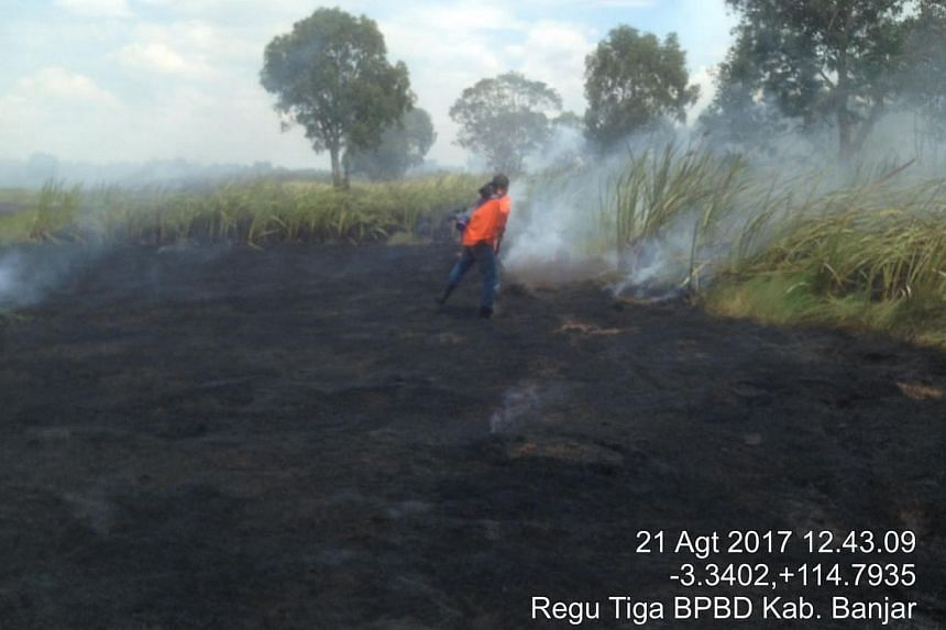 538 hot spots were detected across Indonesia over 24 hours on Aug 22, 2017.