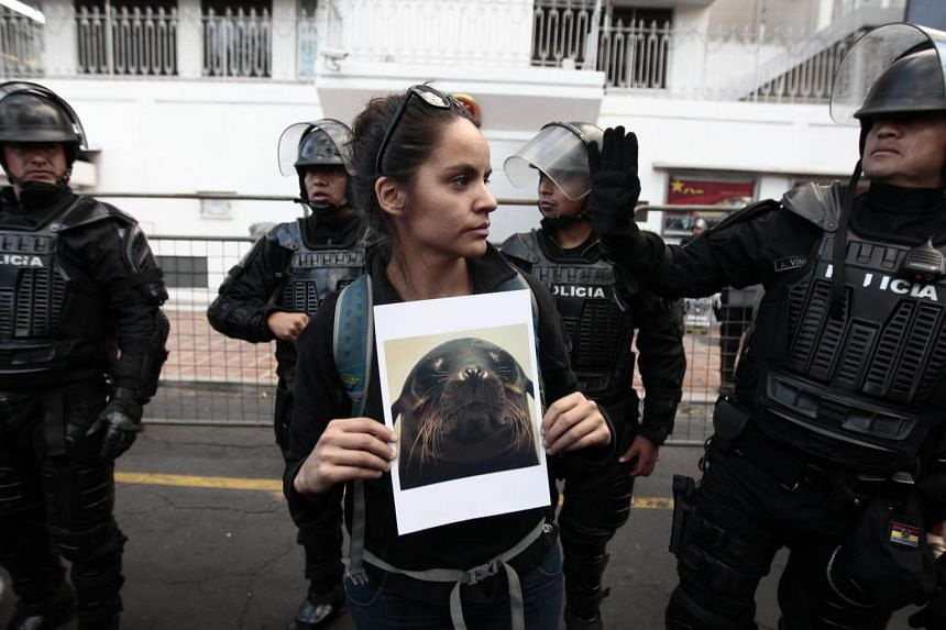 Police standing around a protester outside the Chinese Embassy in Quito, Ecuador, where a rally against the alleged illegal fishing by Chinese ships within the exclusive economic zone of the Galapagos Islands was being held on Aug 24, 2017.