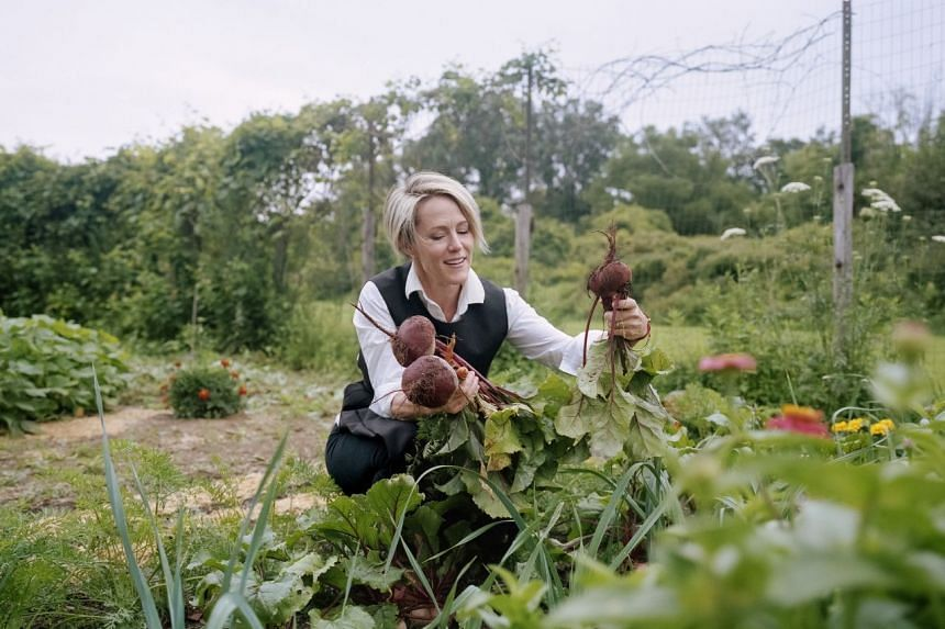 Mary Stuart Masterson, the actress, collects beets from her garden in a small town in New York's Hudson Valley. PHOTO: NYTIMES