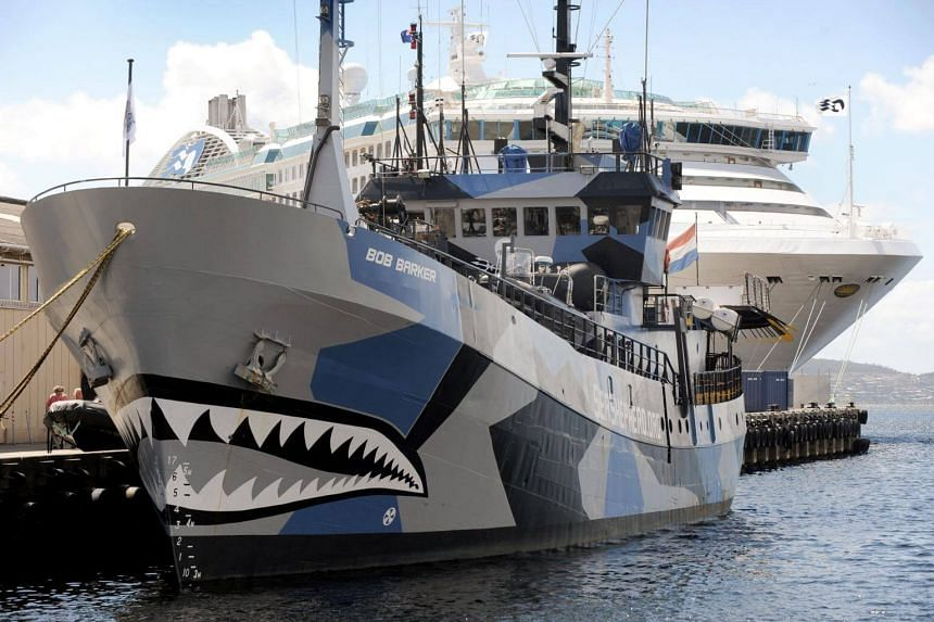 Activist group Sea Shepherd on August 29, 2017 pulled the plug on its annual campaign to disrupt Japanese whaling, saying it can no longer match the country's military and economic power.