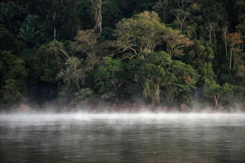 A Brazilian court on Wednesday (Aug 30) suspended a controversial decree that would open up a huge natural reserve in the Amazon rainforest to commercial mining.
